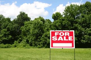Homebuilder Inspires Rising Land Sales